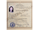 Dr.-Elena-Crihan-1