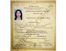 Dr.-Elena-Crihan-12