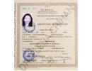 Dr.-Elena-Crihan-15